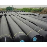 Quality HDPE geomembrane for sale
