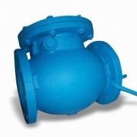 Quality OFFER BEST Cast Iron Swing Check Valves for sale