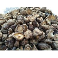 Buy Dried organic shiitake mushrooms wholesale at wholesale prices