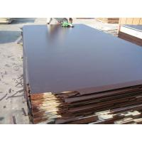 China Brown Film-faced Plywood and Black Film Face Plywood, Construction Plywood on sale