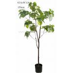 China Heart Shape Green Leaves Artificial Ficus Tree 120CM 150CM 180CM 210CM for sale
