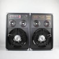 China professional active stage speaker on sale