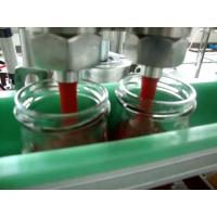 China Linear / Rotary Automatic Liquid Filling Machine Washing Filling Capping Machine on sale
