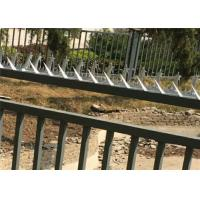 China Galvanized Razor Wall Security Spikes , Burglar Proof Fence Spikes For Perimeter on sale