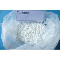 oral turinabol pumps