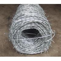 Quality Galvanized Barbed Wire for sale