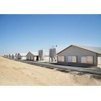 Quality ASTM Standard Prefabricated Steel Structure Building , Poultry Farm Design Prefab Chicken House for sale