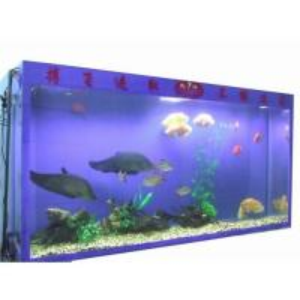 Quality Acrylic Aquarium Tank for sale