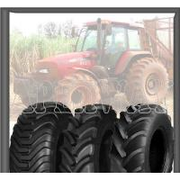 Quality Agricultural Radial Tire for sale