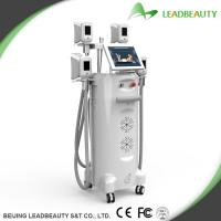 China Made in China ! Cheapest and best cryolipolysis beauty cool body sculpting machine on sale
