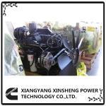 Quality Cummins Industrial Diesel Engines 6CTA8.3-C215 / 6CTA8.3-C240 / 6CTA8.3-C260 For Loader / Excavator / Roller for sale