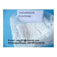 Quality Increases Energy Testosterone Enanthate Powder Prevents Against Bone Loss 315-37-7 for sale