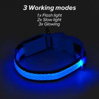 China Durable Rechargeable Lighted Dog Collars Heavy Duty Nylon Webbing Material on sale