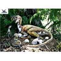 Quality Outdoor Moving Velociraptor Life Size Model For Garden Display / Festival Exhibition for sale