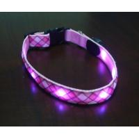 Quality LED Collar and Leash for sale