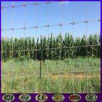 China High Quality Strong Field Farm Deer Fence Weaving
