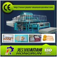 Quality 4000pcs/hr Pulp Moulding Egg Tray Machine , Egg Tray Forming Machine for sale