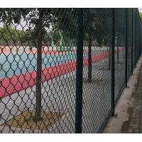 Quality High Strength Green Wire Mesh Fence 50*100mm PVC Coated Iron Wire Material for sale