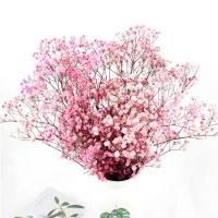 China Multicolor Beautiful Dried Flowers Baby'S Breath Wedding Table Decorations for sale
