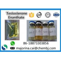 Quality Testosterone Enanthate / Test E Injectable Muscle Building Steroid White Crystalline Powder for sale