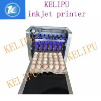 Quality Egg Inkjet Coding Equipment / Continuous Ink System Printer With Six 45ML Ink for sale