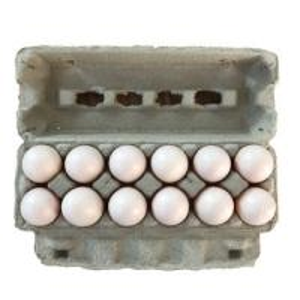 China Qisheng egg tray machine egg tray production line paper tray manufacturing machine egg carton machine price on sale
