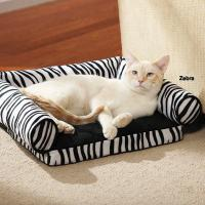 Quality Tear Resistant Memory Foam Cat Bed , Zebra Print Memory Foam Mattress Dog Bed for sale