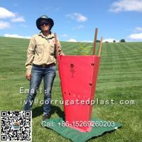 Quality OEM Service Tree protection tubes vine guards/UV Resistance PP Correx Tree Guard for sale