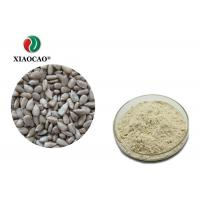 Quality Food Grade Organic Herbal Extracts Sunflower Seed Protein Powder for sale