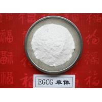 Quality 100% Natural Green Tea Extract Polyphenols and EGCG 98% for sale