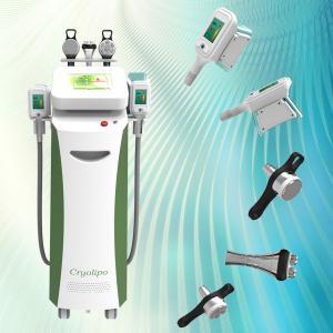 China Hot promotion!!!!!New Designed 5 Handles Fat Freeze Cryolipolysis Vacuum on sale