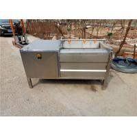 Quality Stainless Steel Fruit Washing Machine For Industry High Speed 1.5kw Power for sale