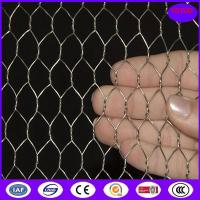 Quality Hot Dipped Galvanized Chicken Wire Mesh , 50mm 2