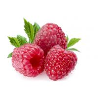 Quality Raspberry extract natural nourishment product for sale