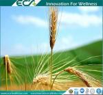 Quality Premium Health Supplements, Zero- added, Instant Oat Powder, Low viscosity, GREAT Taste ; Natural origin for sale