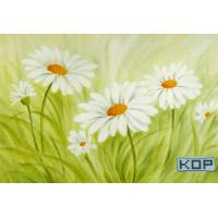 Quality Polyester Fabric White Digital Printing Canvas Waterproof 30M For Photos for sale