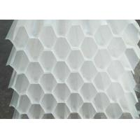 Quality PP PVC Honeycomb Tube Saff Media / Lamella Media For Water Treatment White Color for sale