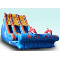 Quality Backyard Large Wave Inflatable Slide For Kids Customized Size And Color for sale