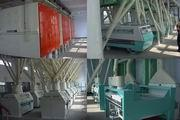 55ton Capacity Wheat Milling Machine (6FTF)