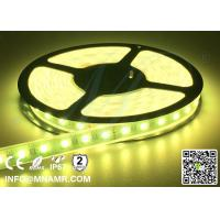 Hot Sale Do-it-yourself RGBW Flexible LED Strip Lights 12V/24VDC Waterproof IP67