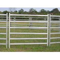 China 2.1m econo gate in frame/40x40mm square tube horse round pens/6 cross bars cattle yard panels for Australia/New Zealand on sale