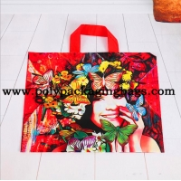 China Multi - Color Printing Die Cut Handle Plastic Shopping Bag on sale