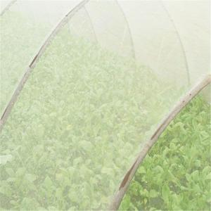 China White Nylon Net Fruit Tree Cover Diamond Mesh Anti UV Anti Insect Bird on sale