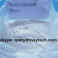 Testosterone / Testosterone Base, cas#58-22-0 for Muscle building