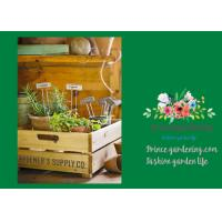 Buy cheap Silver Rustproof Garden Landscape Staples With Zinc Coated Nameplates from Wholesalers