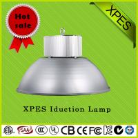Quality 100,000 Hours Long Life Span Magnetic Induction Lamp for sale