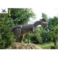 Buy Forest Decoration Handmade Dinosaur Garden Ornaments / Life Size Real Dinosaur Models at wholesale prices