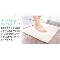 Quality Rapid Water Absorption Diatomite Bath Mat Instant Drying Waterproof Eco Friendly for sale