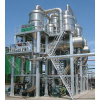 Quality Tomato Processing for sale
