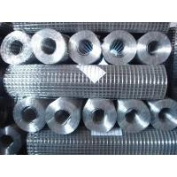 Quality Weld Wire Mesh for sale